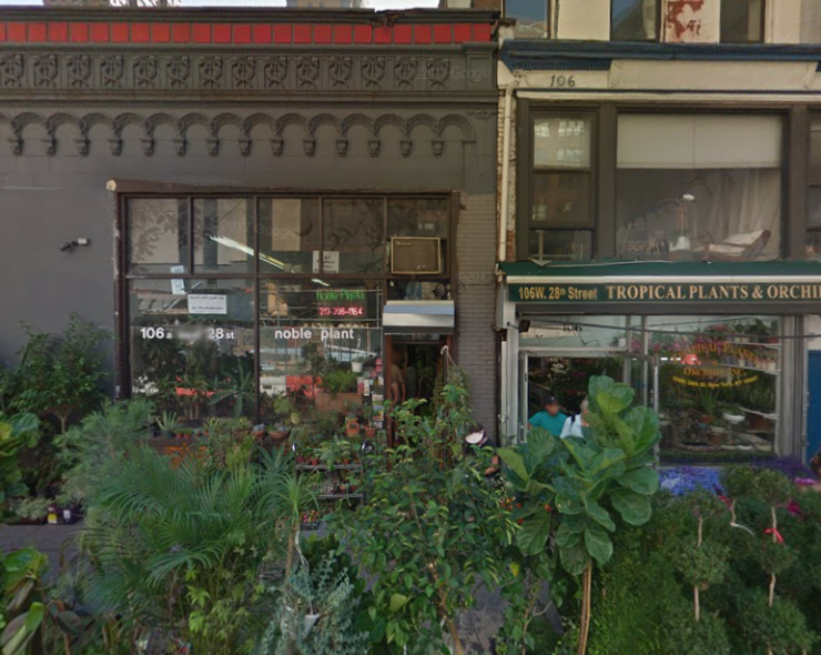noble plants nyc.png