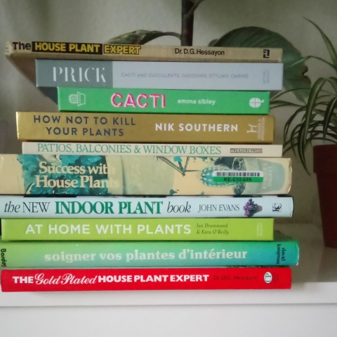 Enjoyable How To Be A House Plant Expert Part 2 Of 3 Houseplanthouse Interior Design Ideas Clesiryabchikinfo