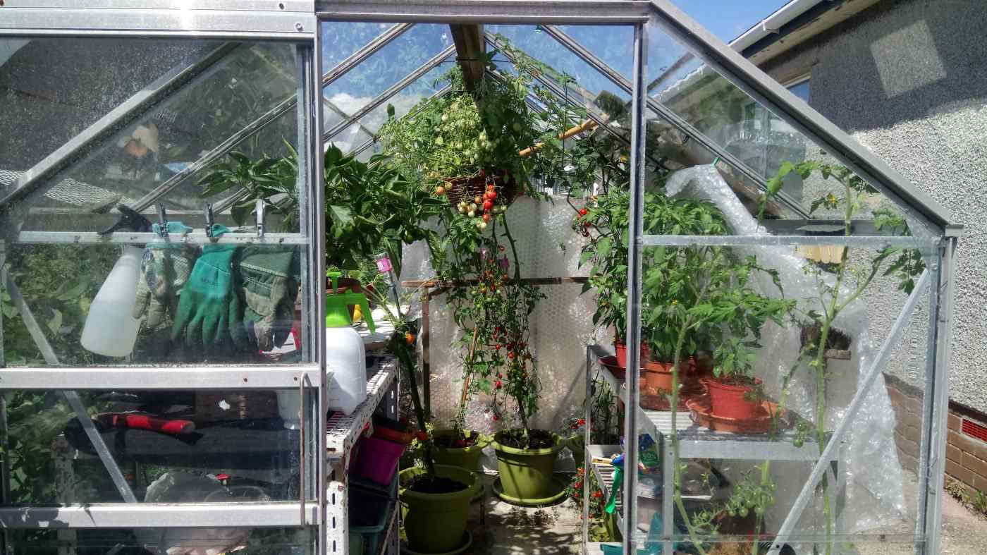 plant care cupplies greenhouse pic
