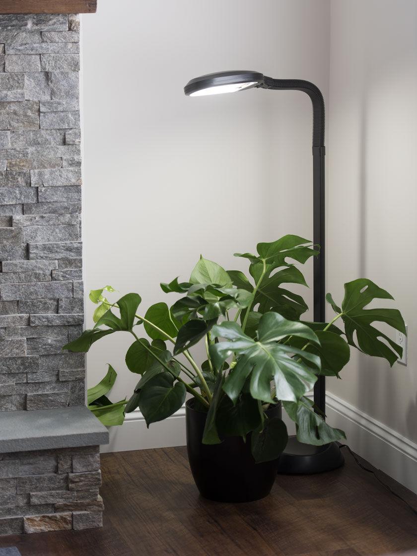 gardeners floor lamp