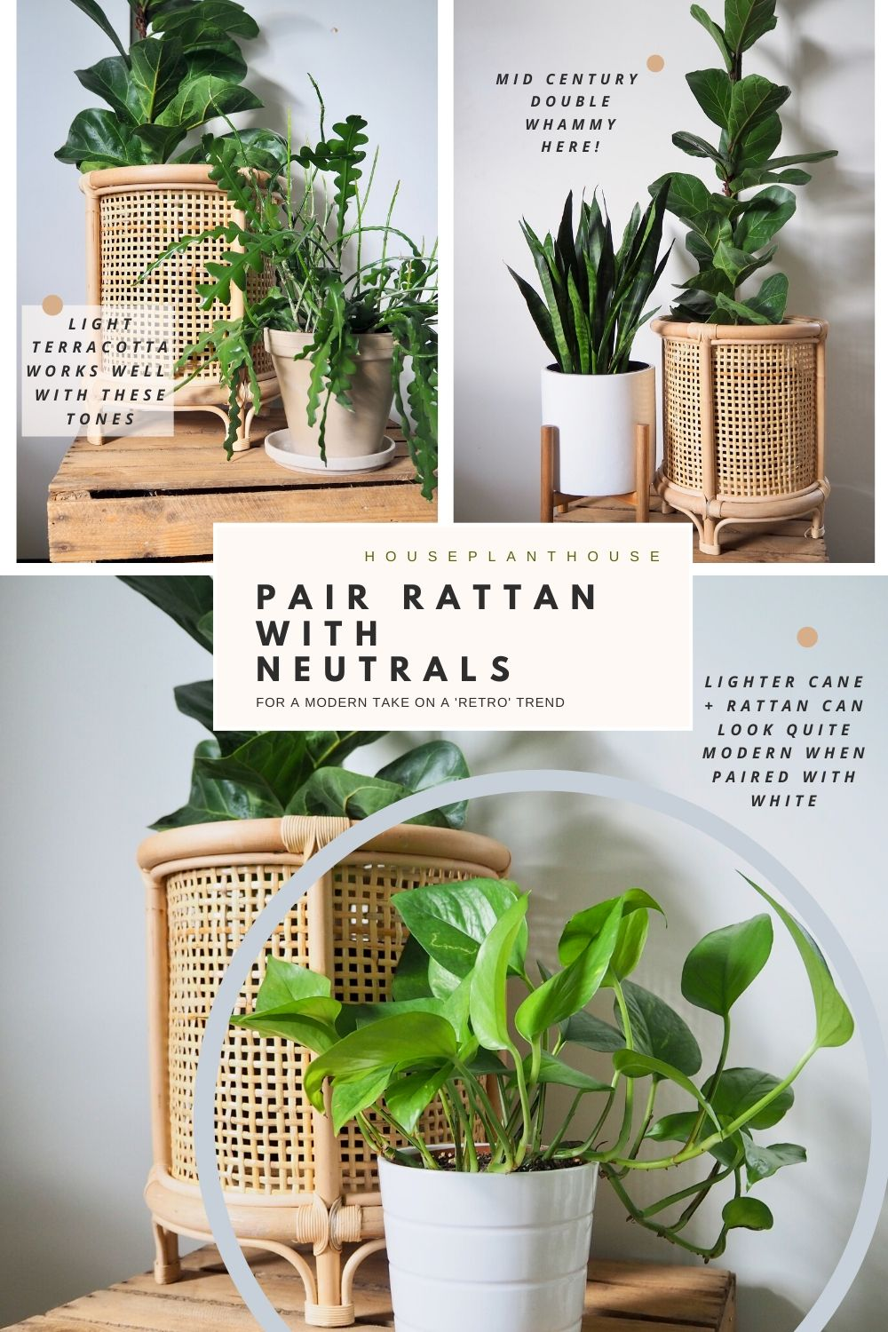 PAIR RATTAN WITH NEUTRALS