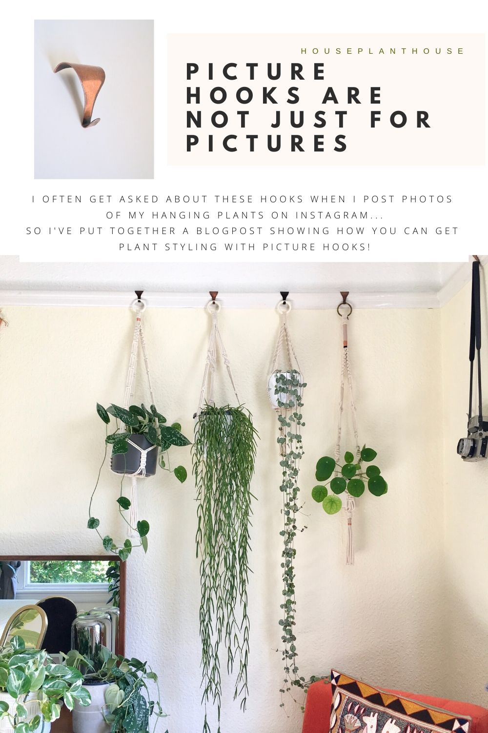 PICTURE HOOKS ARE NOT JUST FOR PICTURES