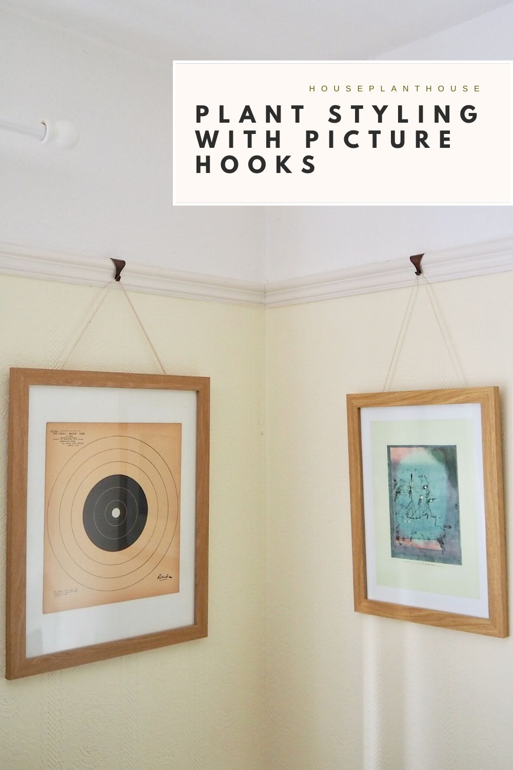 PLANT STYLING WITH PICTURE HOOKS