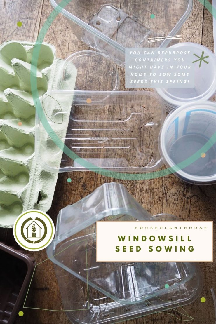 seed sowing1
