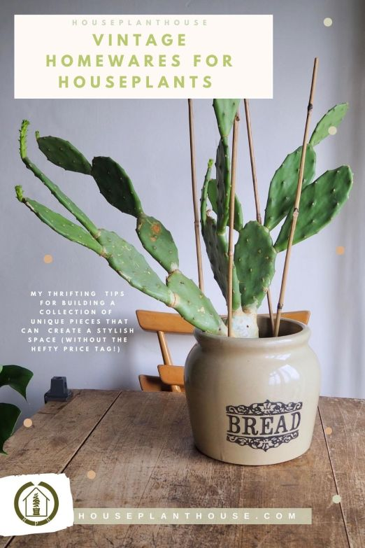 Copy of a mindful approach to keeping houseplants